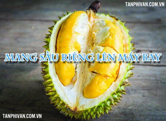 dua sau rieng len may bay